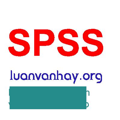 spss2 - hỗ trợ chỉnh sửa data dữ liệu spss stata eveiws r
