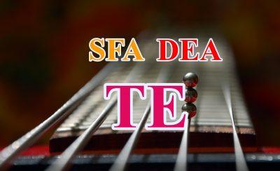 TE SFA DEA 400x245 - Hiệu quả kỹ thuật bởi Phân tích biên ngẫu nhiên SFA