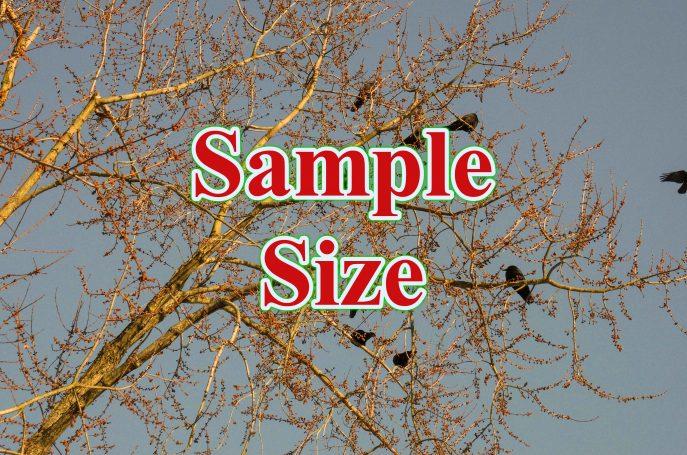 Sample Size 687x455 - ước tính cỡ mẫu cho hồi quy