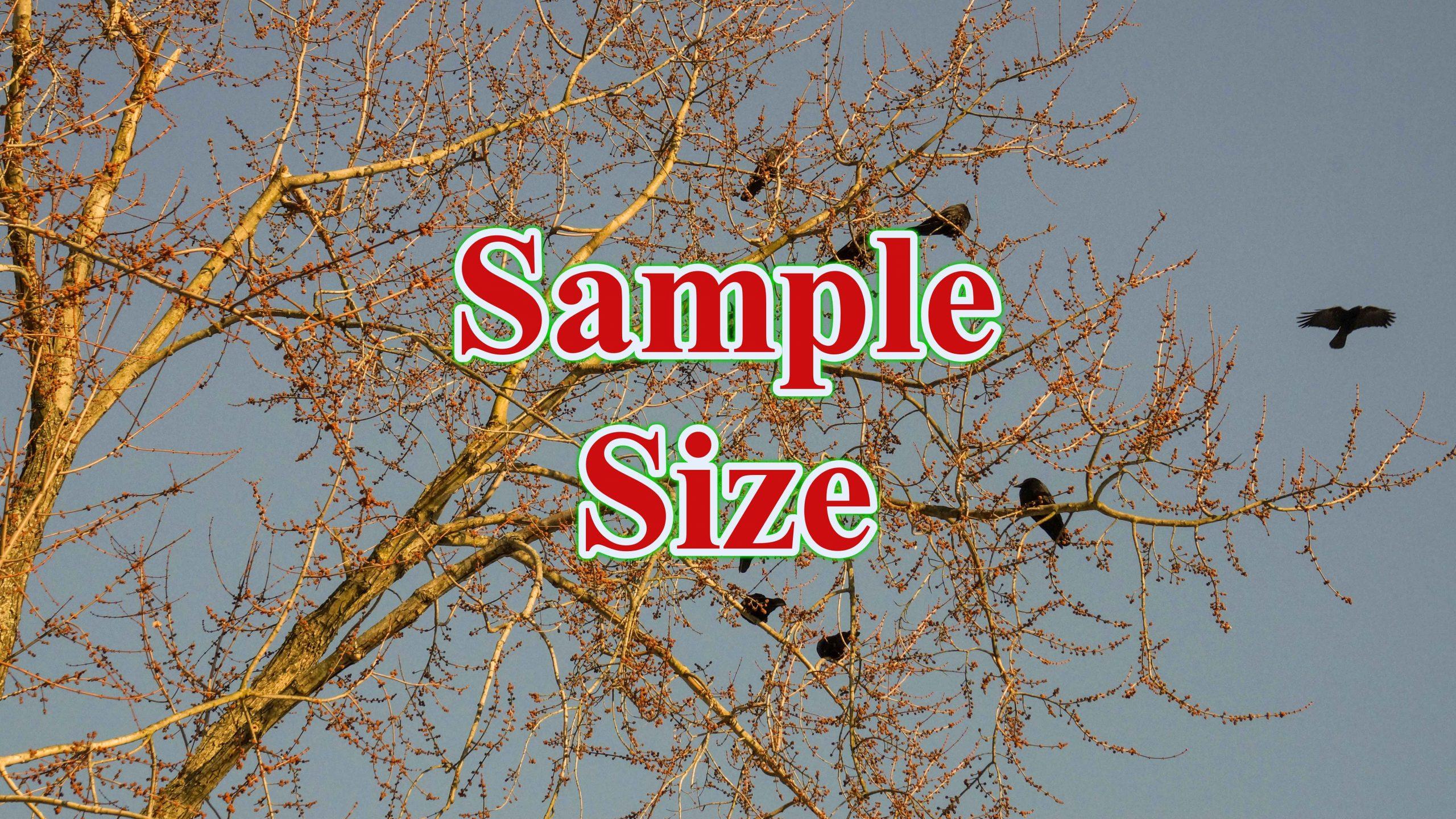 Sample Size scaled - ước tính cỡ mẫu cho hồi quy