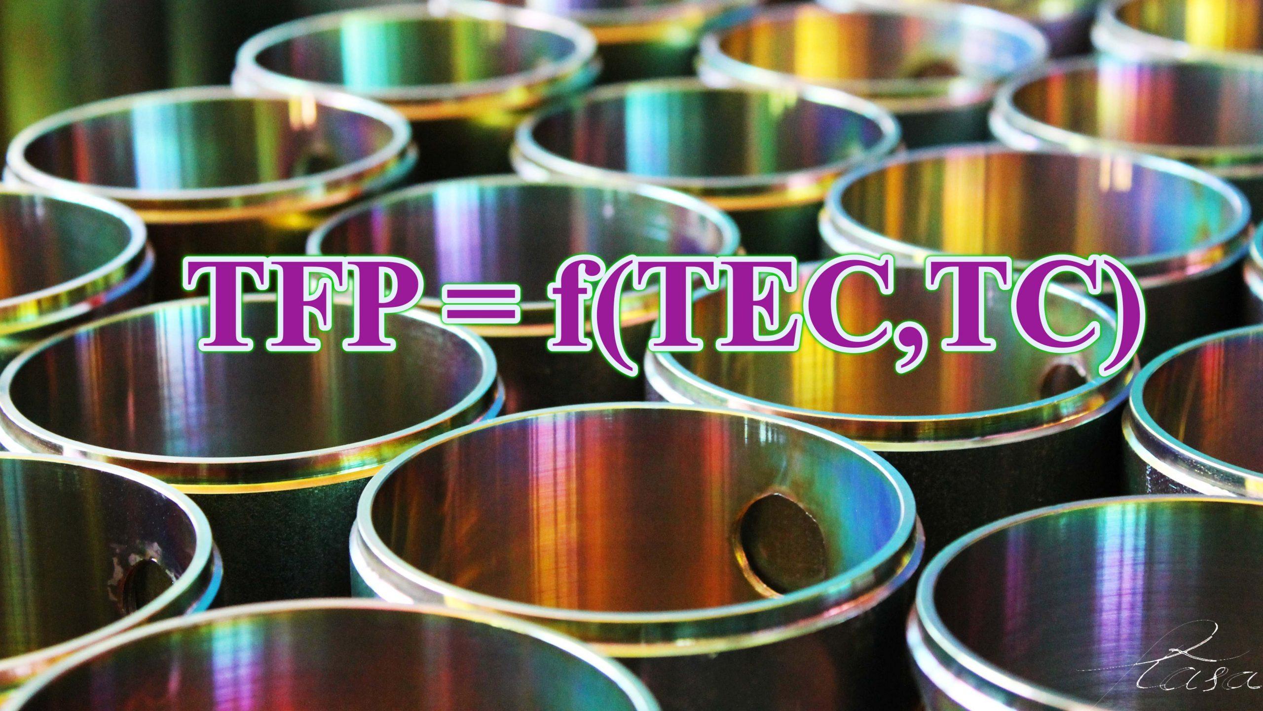 tfp tec tc scaled - yếu tố năng suất tổng hợp TFP hiệu quả kỹ thuật TE